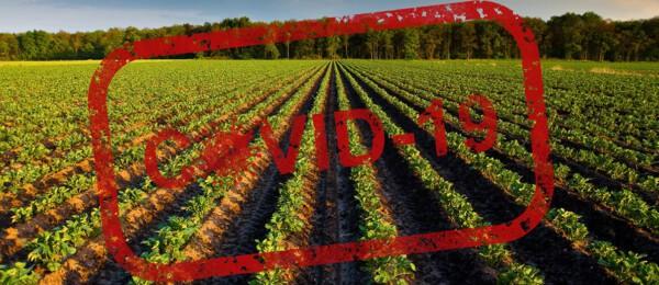 Covid 19 heeft weinig vat op bedrijfsvoering agrariërs
