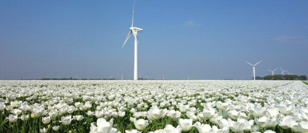 Duurzame energie in de agrarische sector: Windenergie