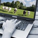 11 tips voor succesvolle e-mailmarketing in de agrisector